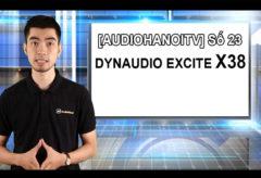 [AudioHanoiTV] Số 23: Review Loa Dynaudio Excite X38