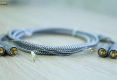 Trải nghiệm dây tín hiệu AudioQuest Wildcat dành riêng cho đầu đĩa than