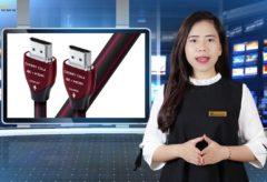 AudioHanoiTV] Số 279: Review Dây tín hiệu AudioQuest HDMI Cherry cola