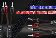 Trải nghiệm tiếng bass đầy uy lực cùng dây loa AudioQuest William Tell Bass | AudioHanoiTV số 290