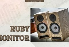 Giới thiệu Loa Pylon Audio Ruby Monitor I AudioHanoiTV 335