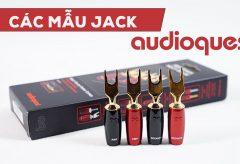 Các mẫu đầu jack AudioQuest cho dây loa bán chạy tại Audio Hà Nội