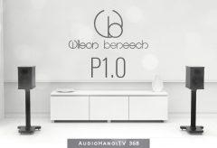 Giới Thiệu Loa Wilson Benesch P1 0 | AudioHanoiTV 368